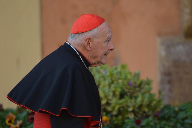 Pédophilie : aux États-Unis, une pétition demande la démission collective des évêques