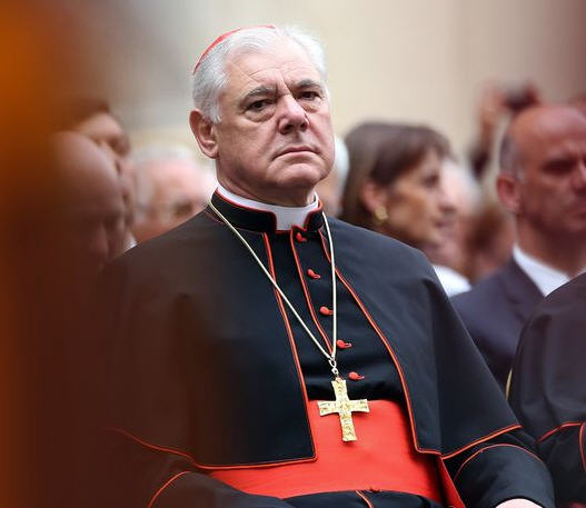 Le Cardinal Müller sur quelques sujets actuels
