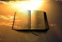 Le nécessaire acte de foi, homélie dominicale